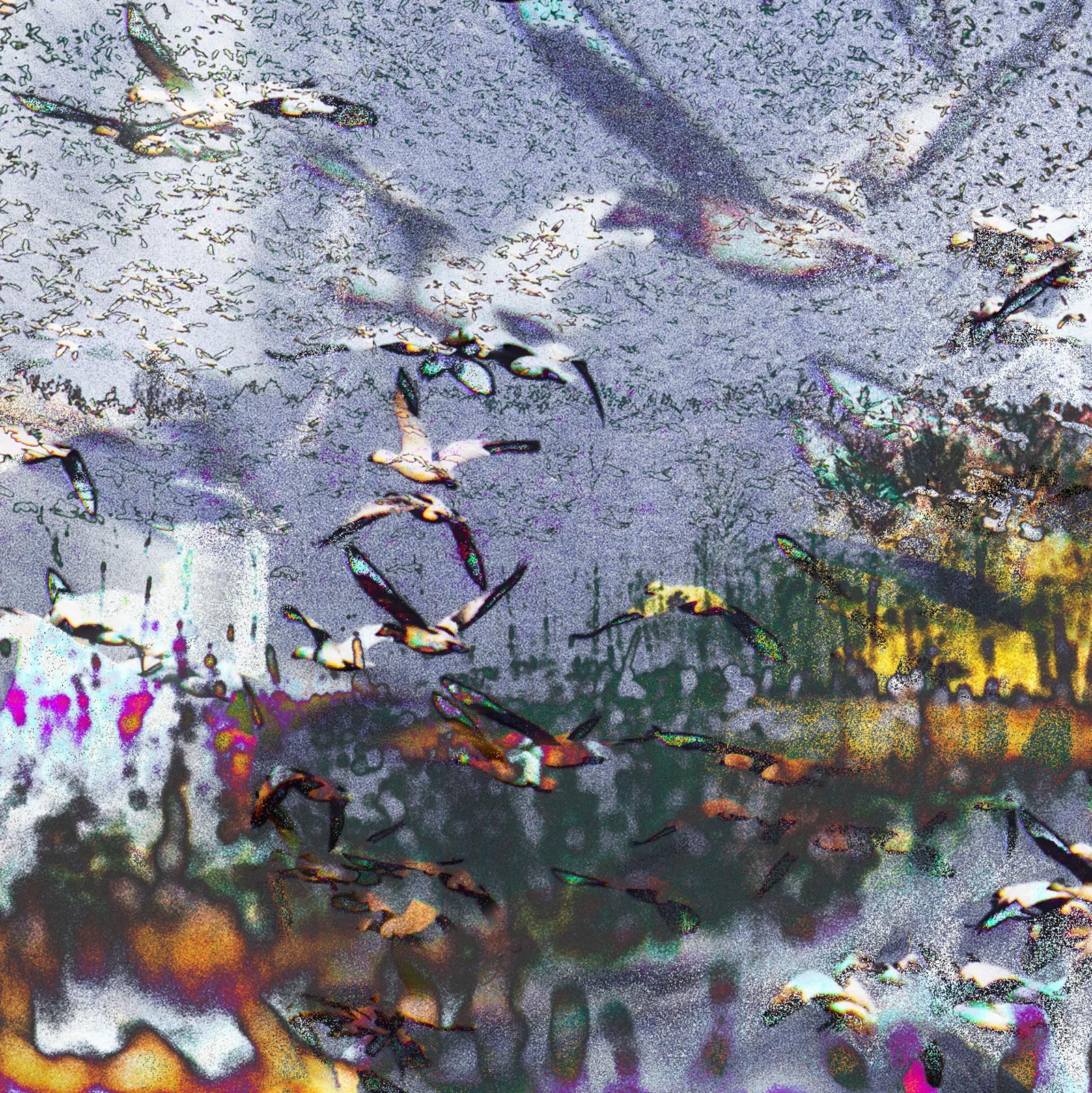 Avril 8h05 30x46 de Marjorie art représentant de manière abstraite l'envolée des oies