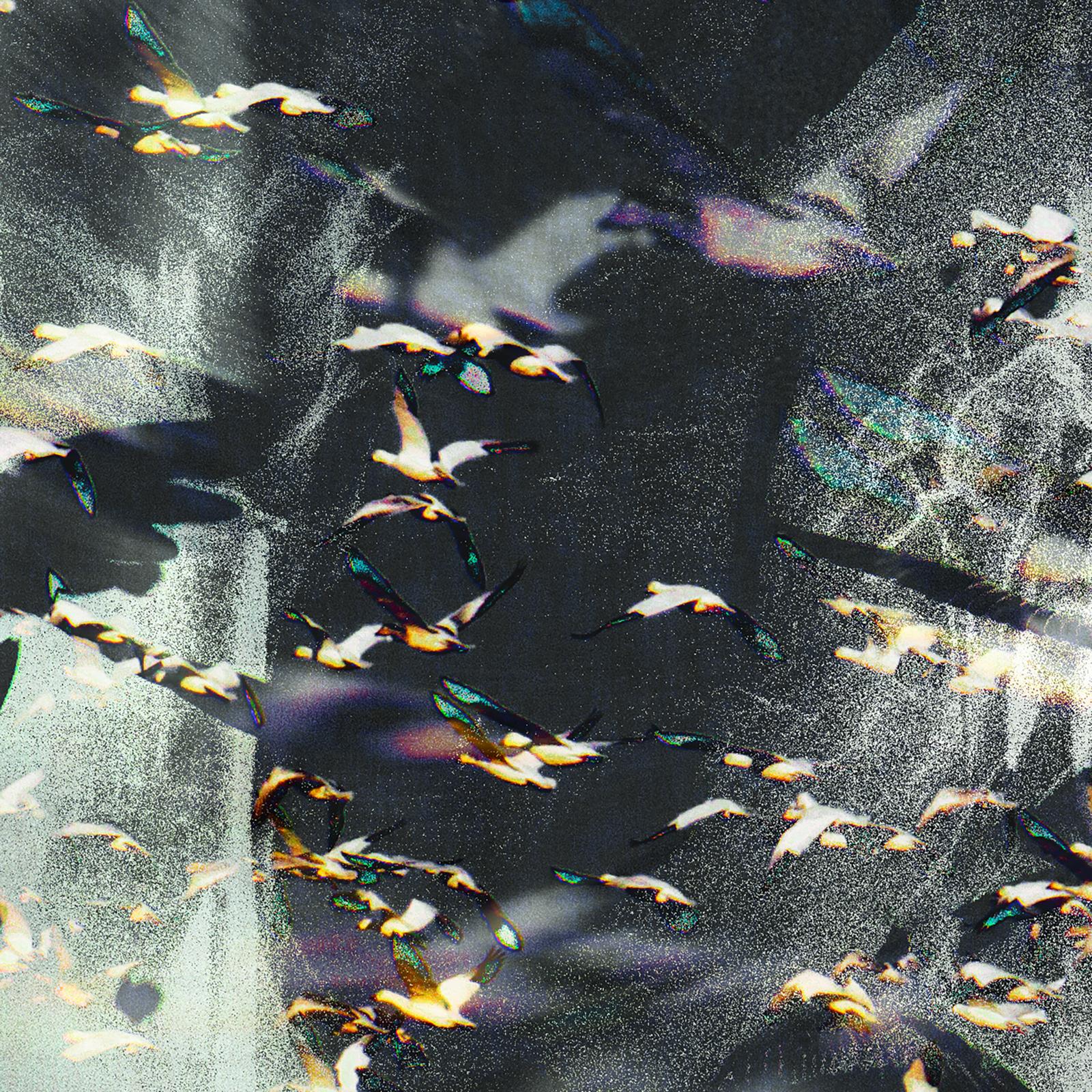 Décembre 1h05 format 30x30 de Marjorie art représentant de manière abstraite l'envolée des oies