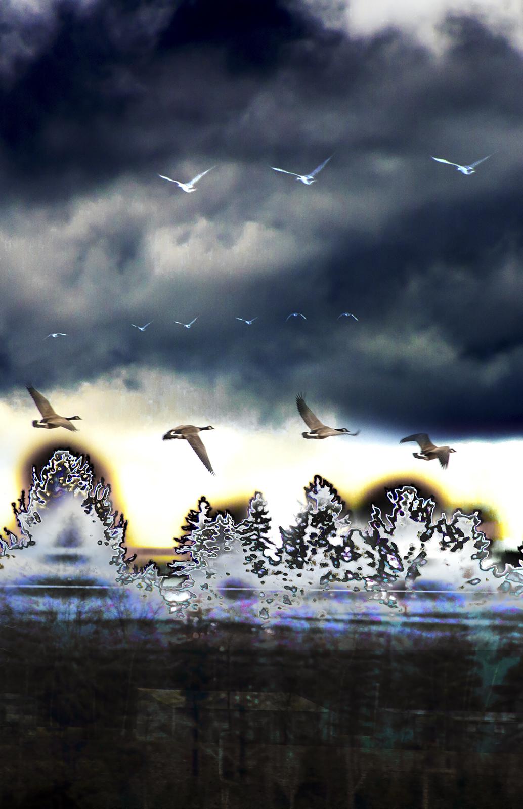 Un peu plus haut 30x46 de Marjorie art représentant de manière abstraite l'envolée des oies